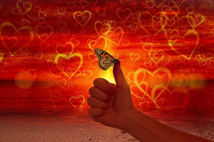 Mencari cinta sejati